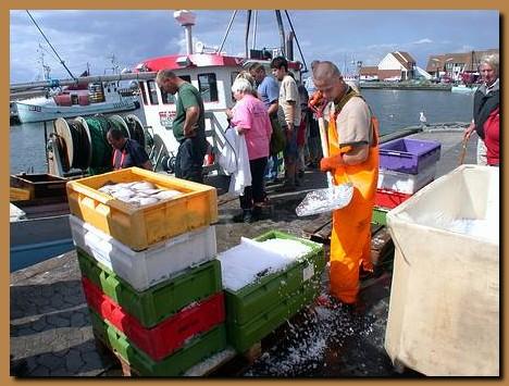 Danimarca isola di mon klintholm havn for Barchetta da pesca