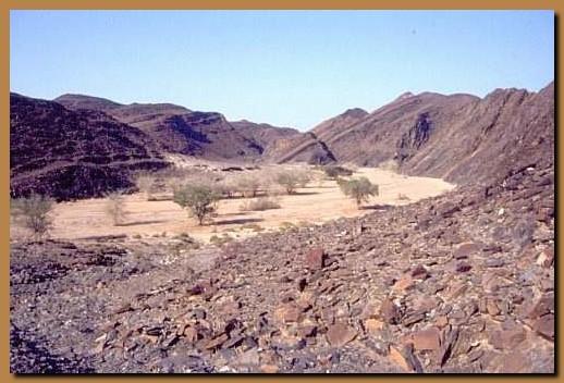 Namibia damaraland - Letto di un fiume in secca ...